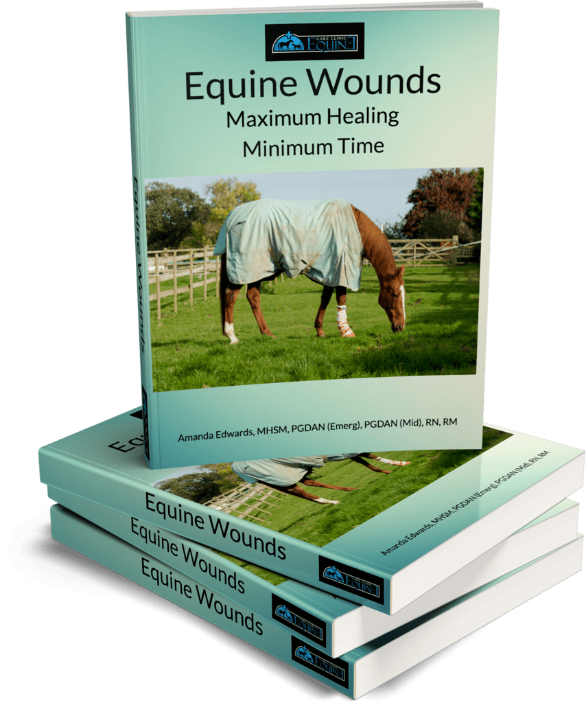 E Book Equine Wounds